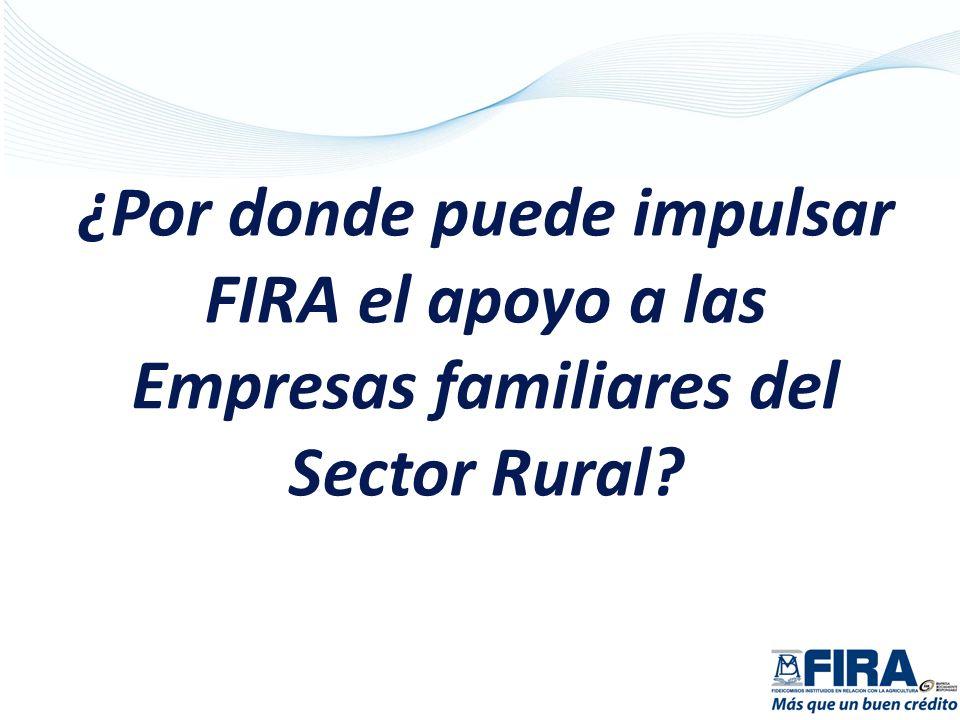 ¿Por donde puede impulsar FIRA el apoyo a las