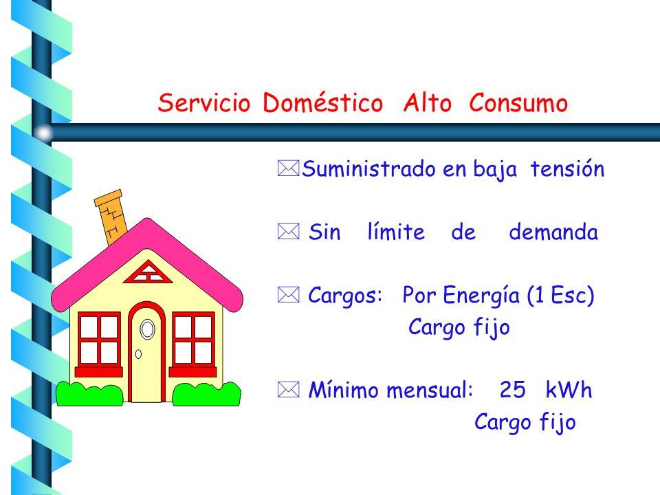 Servicio Doméstico Alto Consumo