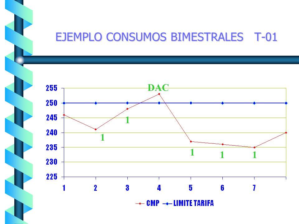 EJEMPLO CONSUMOS BIMESTRALES T-01