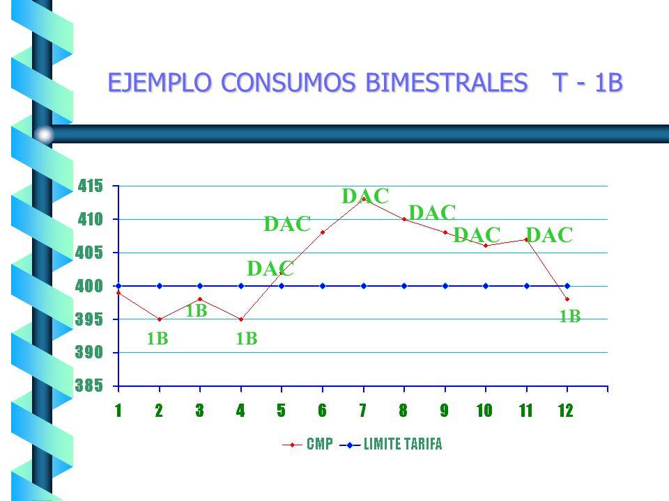 EJEMPLO CONSUMOS BIMESTRALES T - 1B