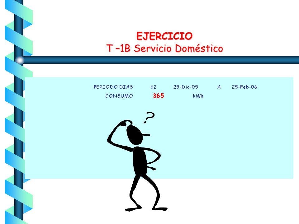 EJERCICIO T –1B Servicio Doméstico