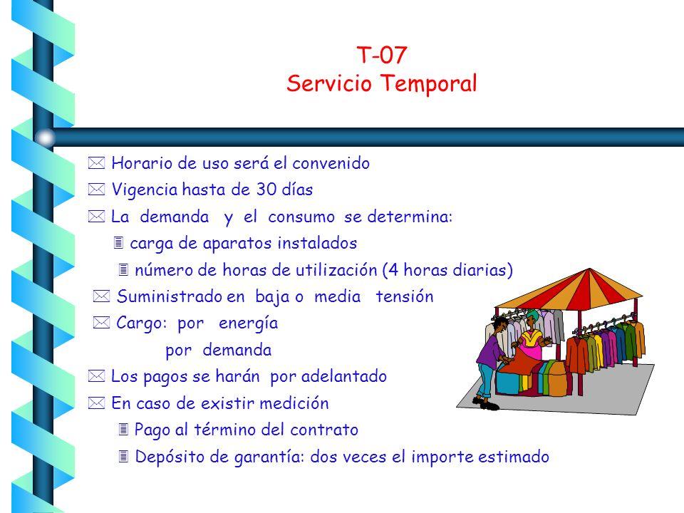 T-07 Servicio Temporal  Horario de uso será el convenido