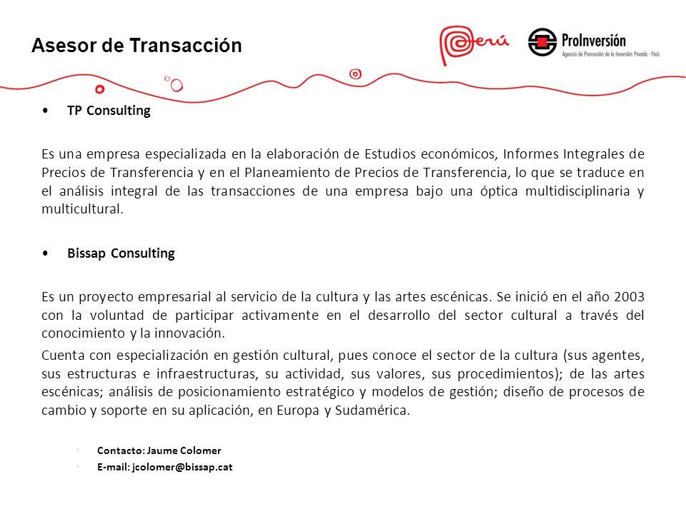 Asesor de Transacción TP Consulting