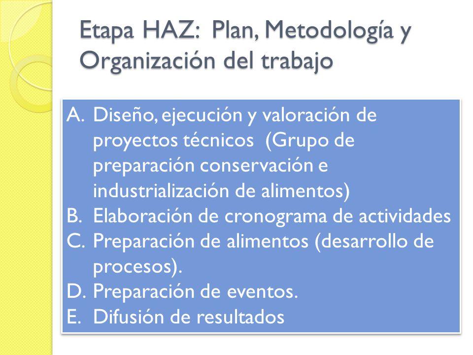 Etapa HAZ: Plan, Metodología y Organización del trabajo
