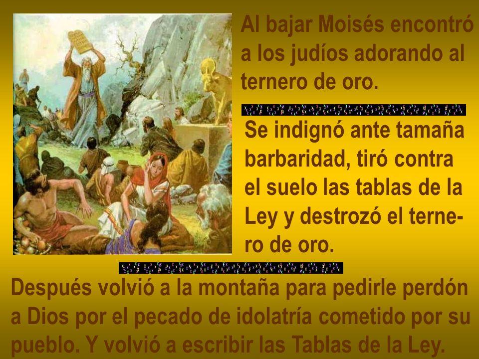Al bajar Moisés encontró