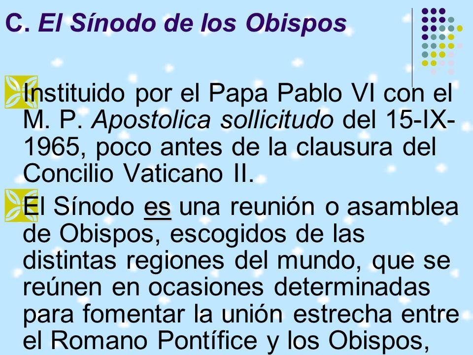C. El Sínodo de los Obispos