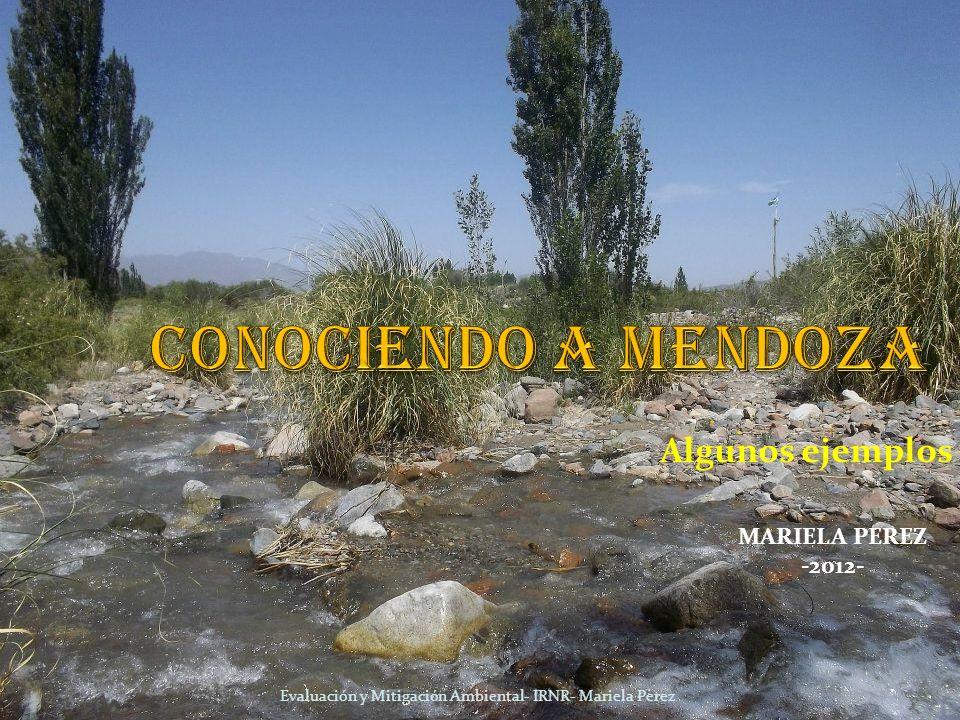 CONOCIENDO A MENDOZA Algunos ejemplos MARIELA PEREZ -2012-