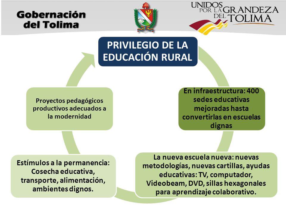 PRIVILEGIO DE LA EDUCACIÓN RURAL