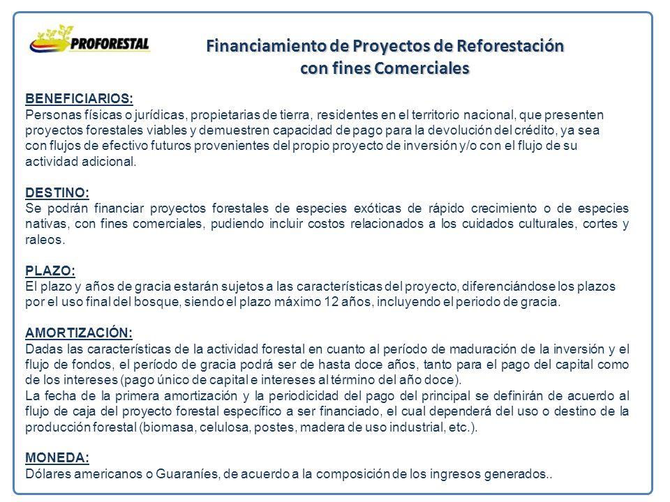 Financiamiento de Proyectos de Reforestación