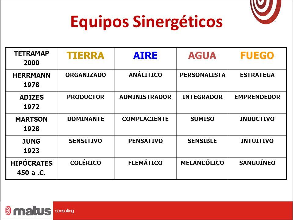 Equipos Sinergéticos TIERRA AIRE AGUA FUEGO TETRAMAP 2000 HERRMANN