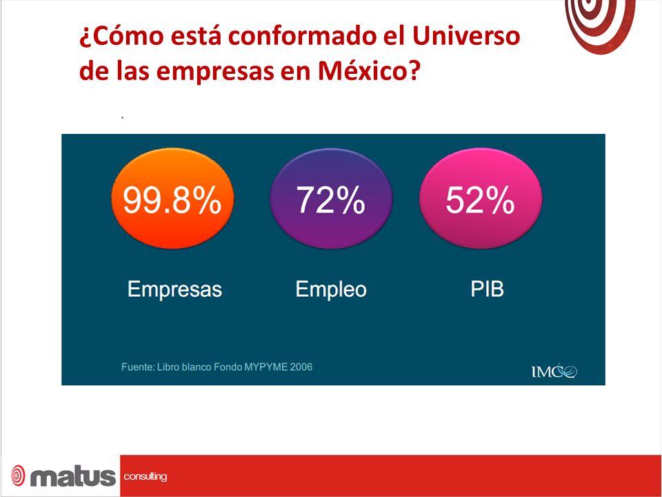 ¿Cómo está conformado el Universo de las empresas en México