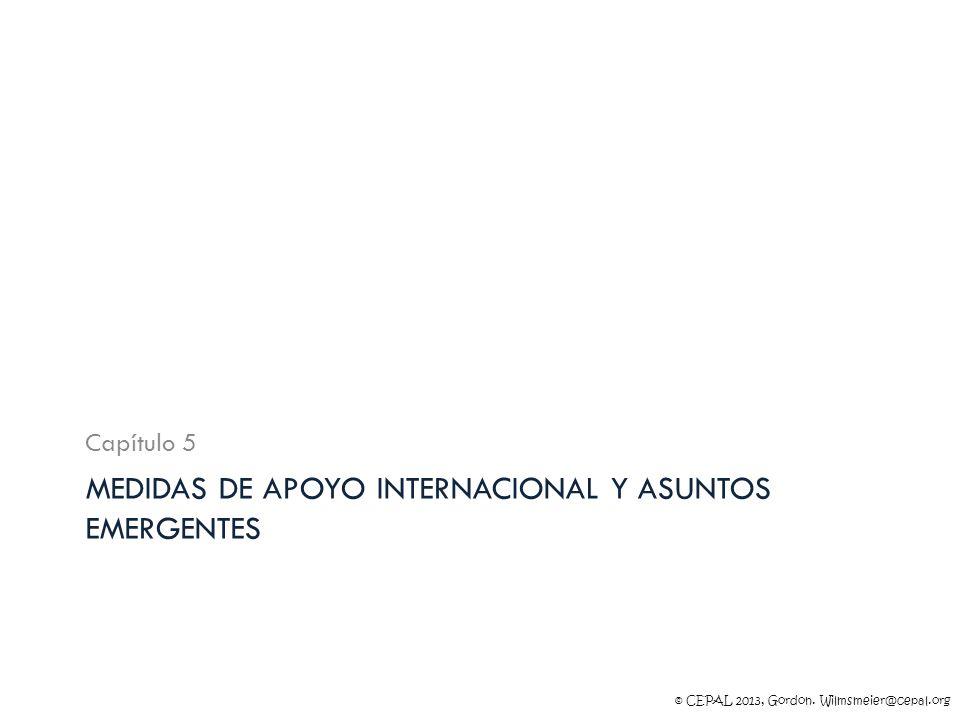 Medidas de apoyo internacional y asuntos emergentes