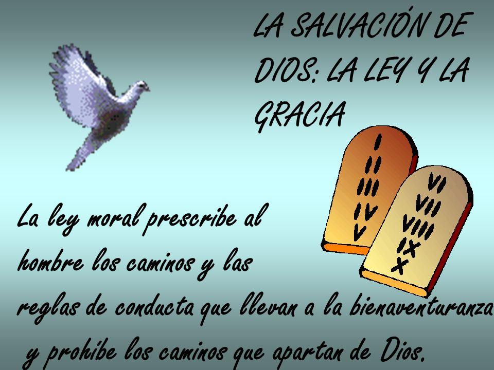 LA SALVACIÓN DE DIOS: LA LEY Y LA. GRACIA. La ley moral prescribe al. hombre los caminos y las.