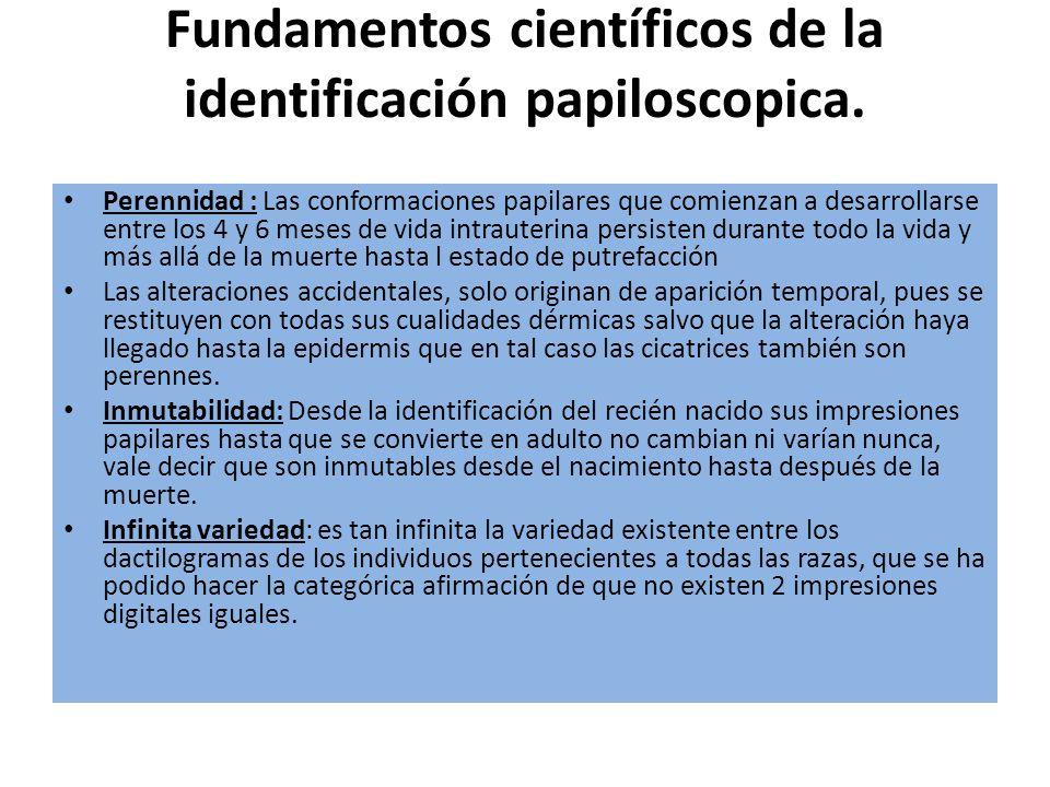 Fundamentos científicos de la identificación papiloscopica.