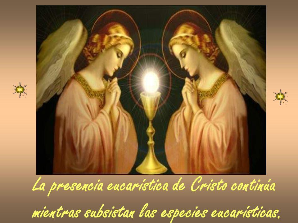 La presencia eucarística de Cristo continúa