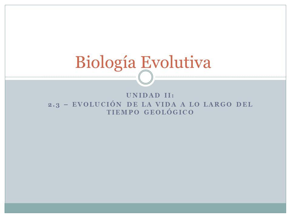 Unidad II: 2.3 – Evolución de la vida a lo largo del tiempo geológico