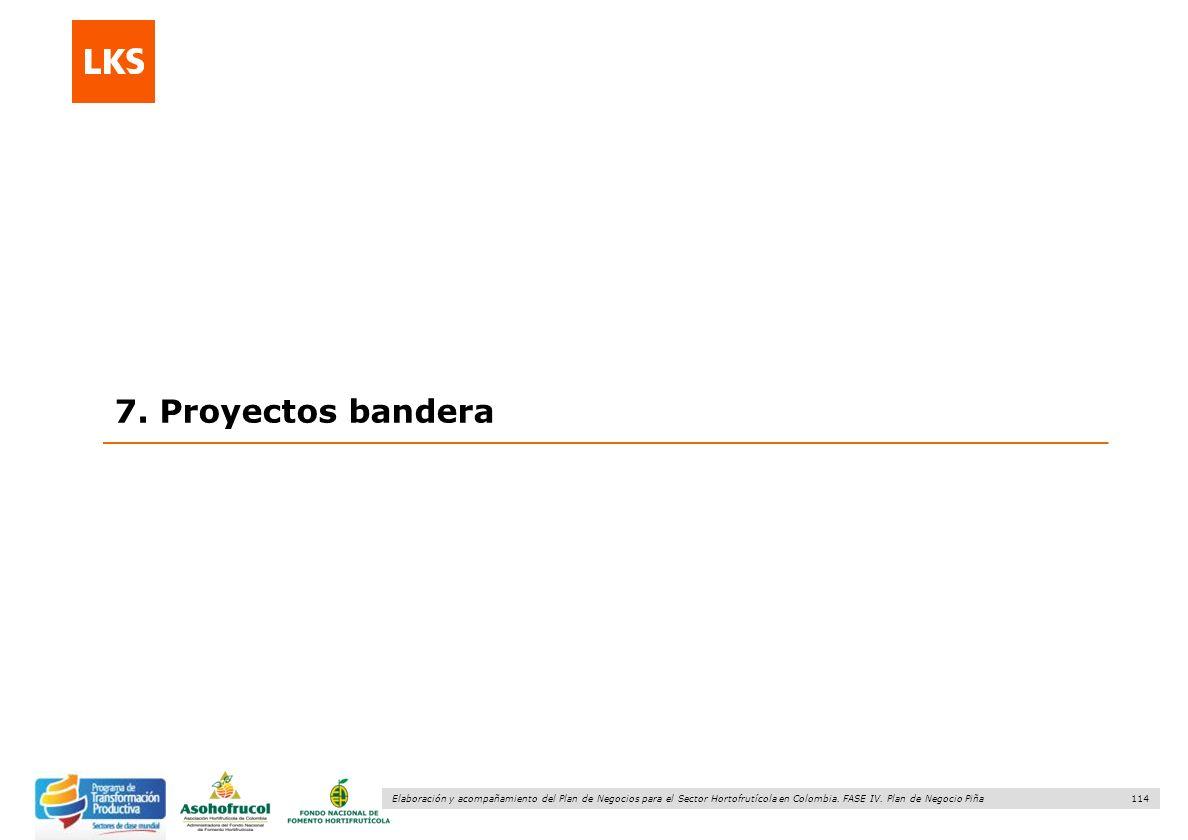 7. Proyectos bandera 114