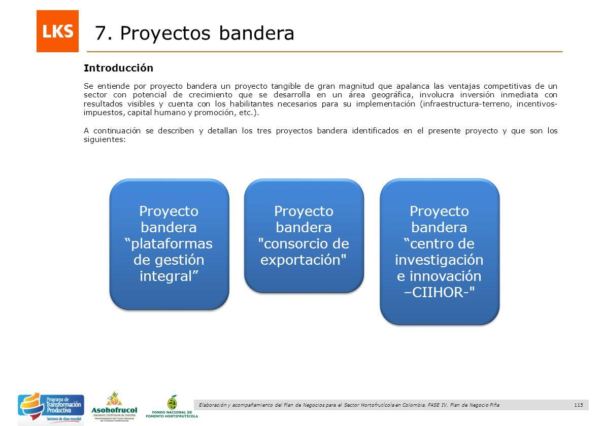 7. Proyectos bandera Introducción.