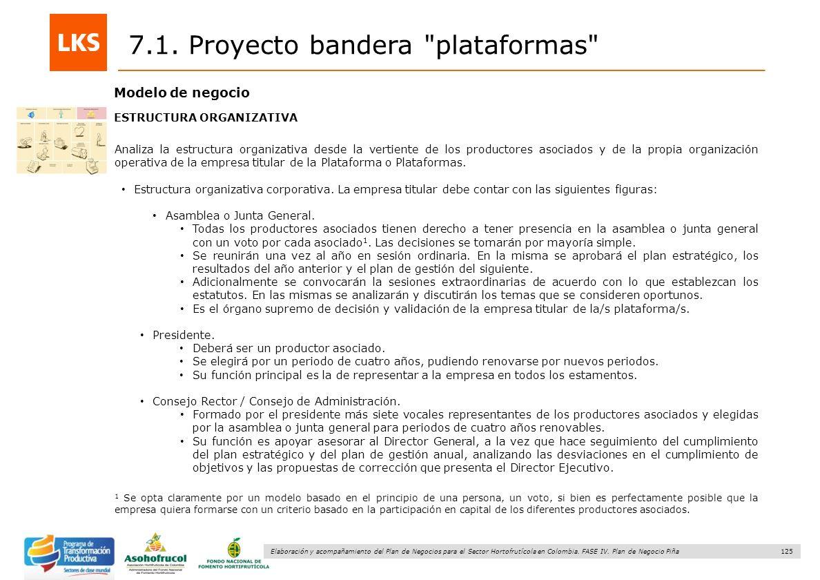 7.1. Proyecto bandera plataformas
