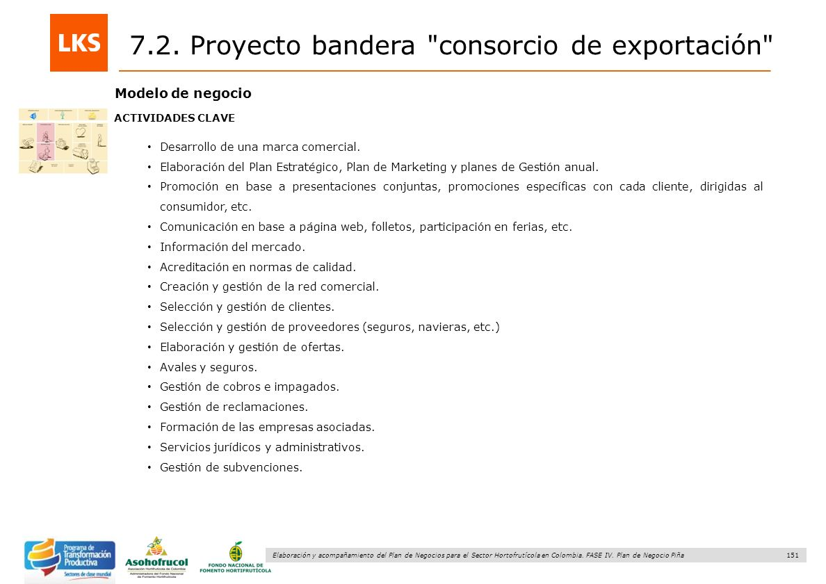 7.2. Proyecto bandera consorcio de exportación