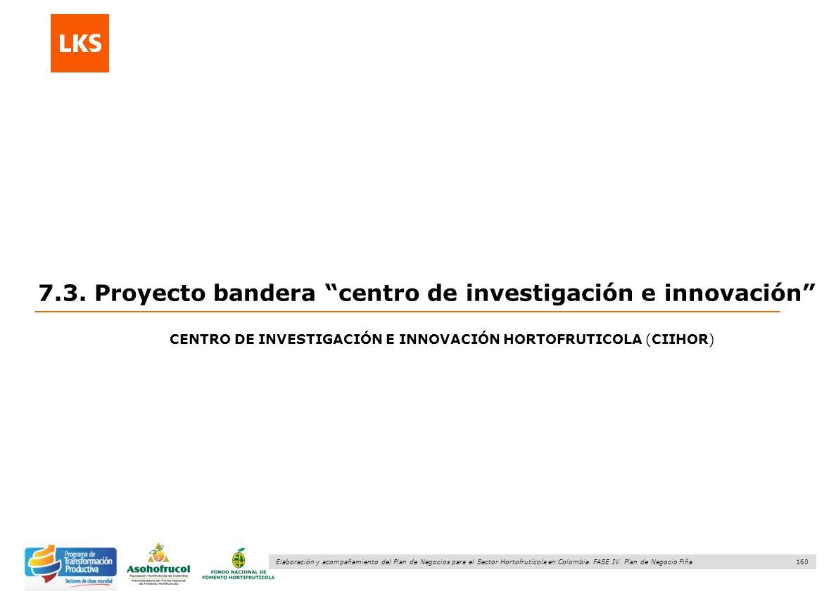 7.3. Proyecto bandera centro de investigación e innovación