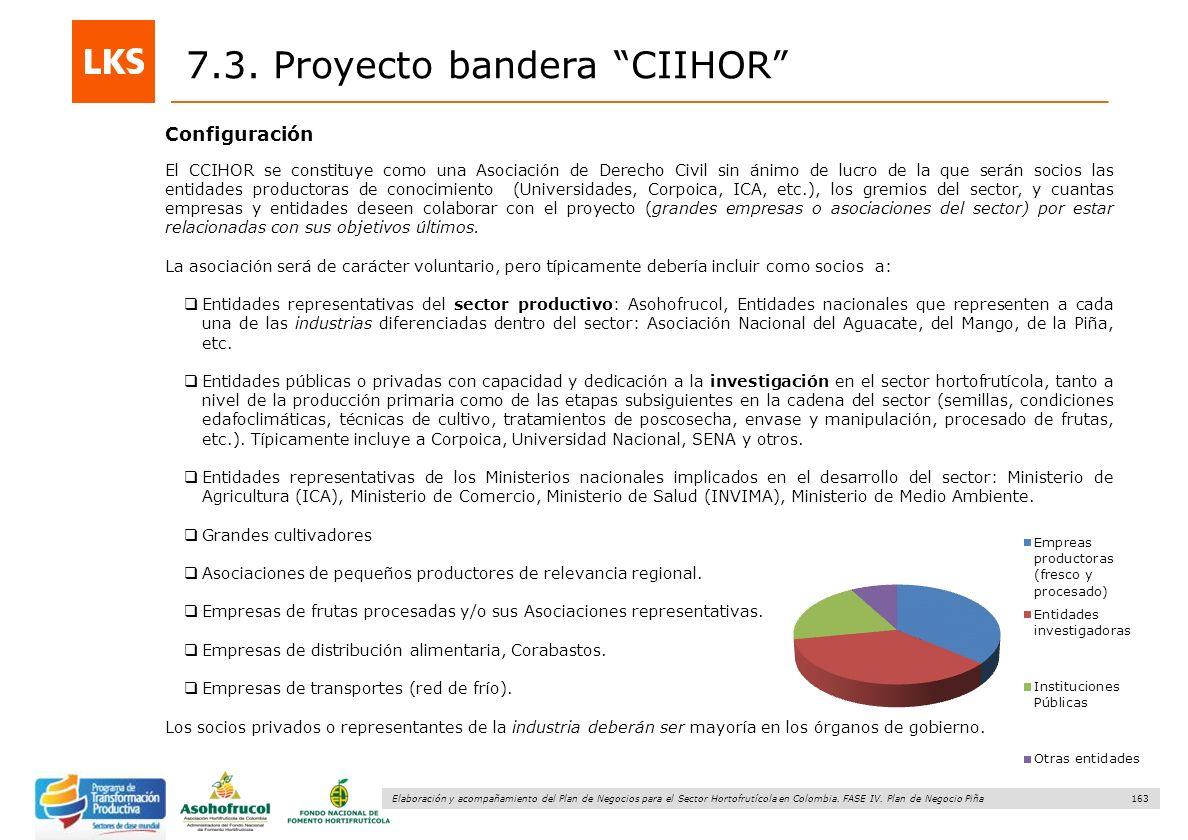 7.3. Proyecto bandera CIIHOR