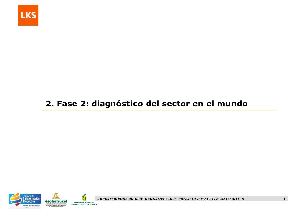 2. Fase 2: diagnóstico del sector en el mundo