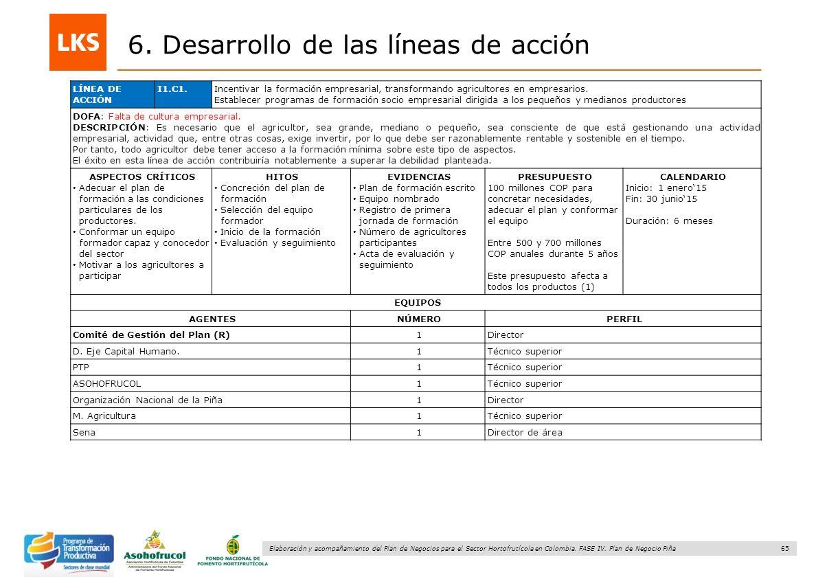 6. Desarrollo de las líneas de acción