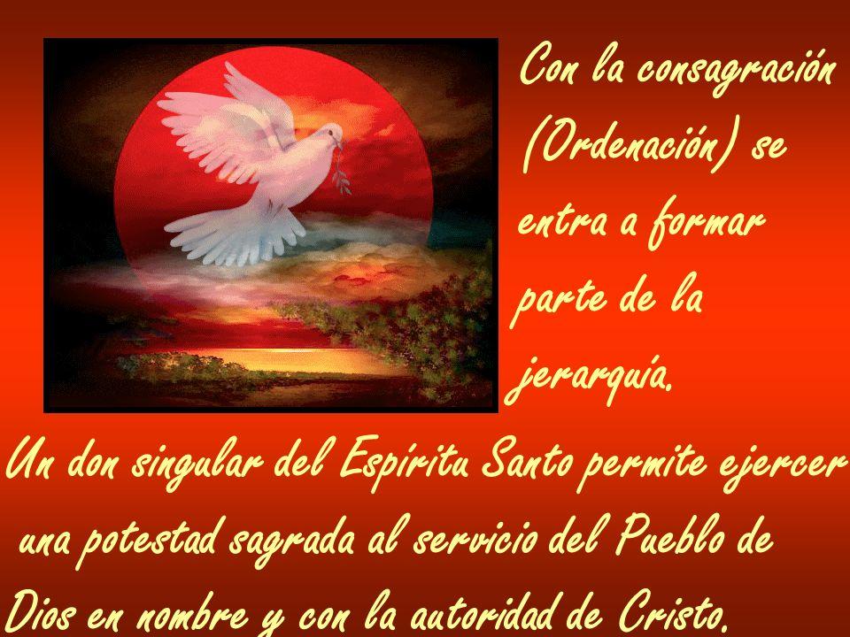 Con la consagración(Ordenación) se. entra a formar. parte de la. jerarquía. Un don singular del Espíritu Santo permite ejercer.
