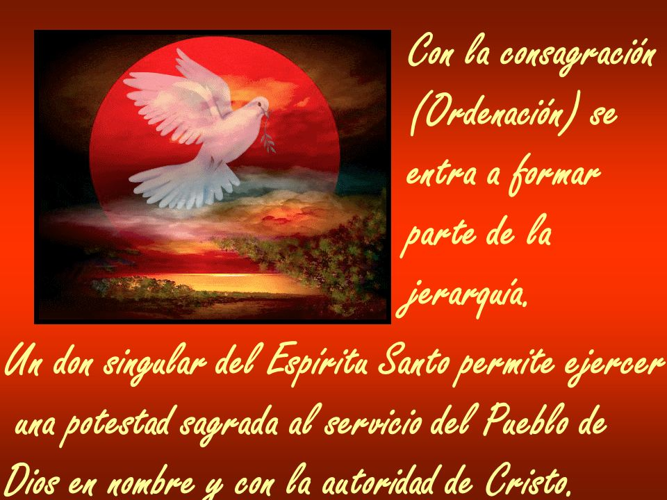Con la consagración (Ordenación) se. entra a formar. parte de la. jerarquía. Un don singular del Espíritu Santo permite ejercer.