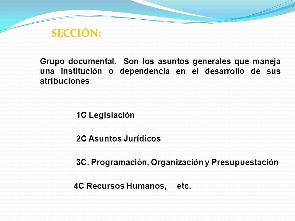 SECCIÓN: Grupo documental. Son los asuntos generales que maneja una institución o dependencia en el desarrollo de sus atribuciones.