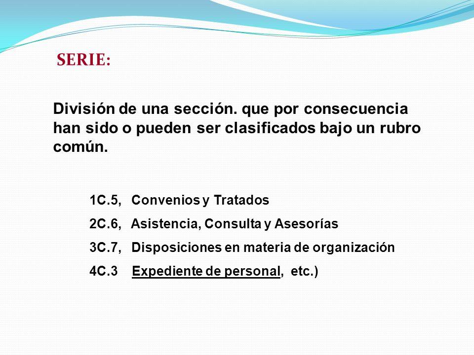 SERIE: División de una sección. que por consecuencia han sido o pueden ser clasificados bajo un rubro común.