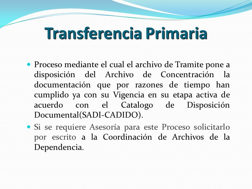 Transferencia Primaria