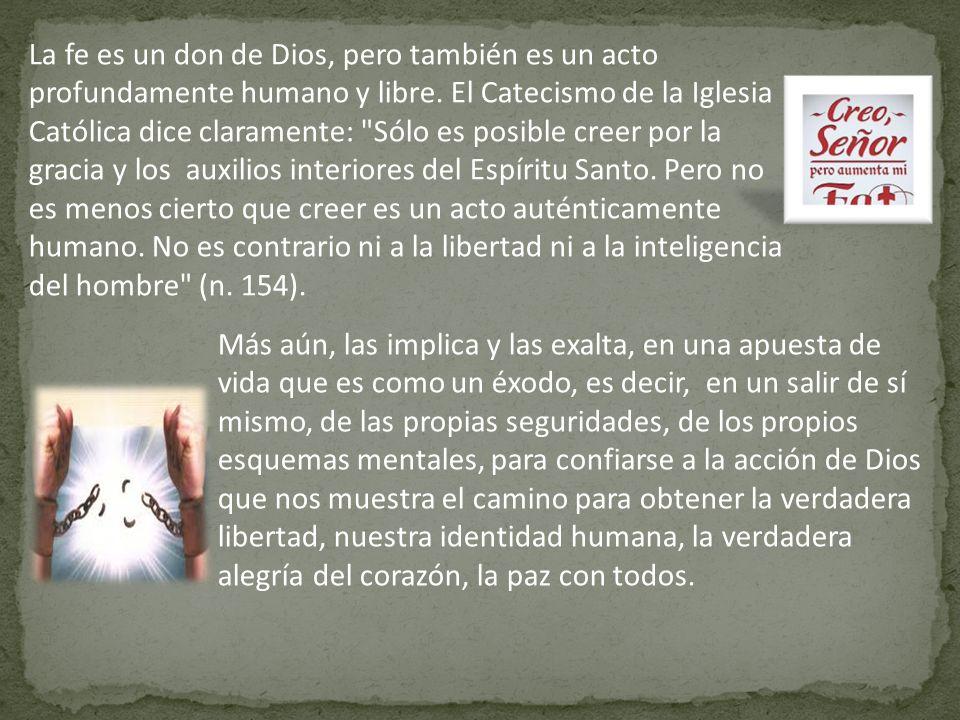La fe es un don de Dios, pero también es un acto profundamente humano y libre. El Catecismo de la Iglesia Católica dice claramente: Sólo es posible creer por la gracia y los auxilios interiores del Espíritu Santo. Pero no es menos cierto que creer es un acto auténticamente humano. No es contrario ni a la libertad ni a la inteligencia del hombre (n. 154).