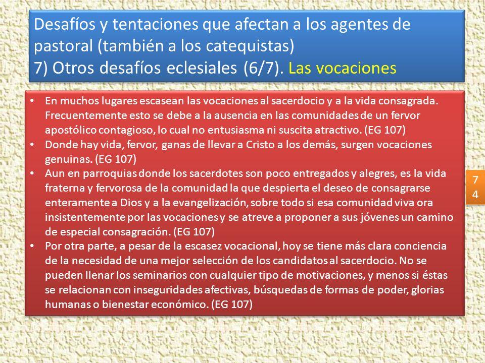 7) Otros desafíos eclesiales (6/7). Las vocaciones