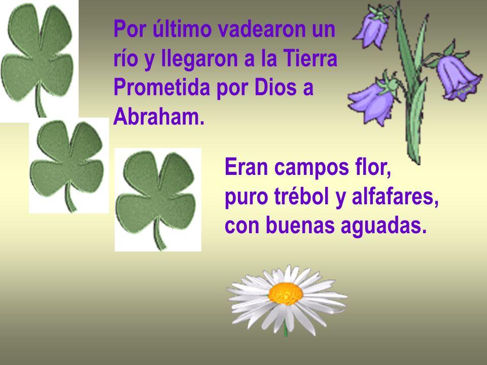 Por último vadearon un río y llegaron a la Tierra. Prometida por Dios a. Abraham. Eran campos flor,