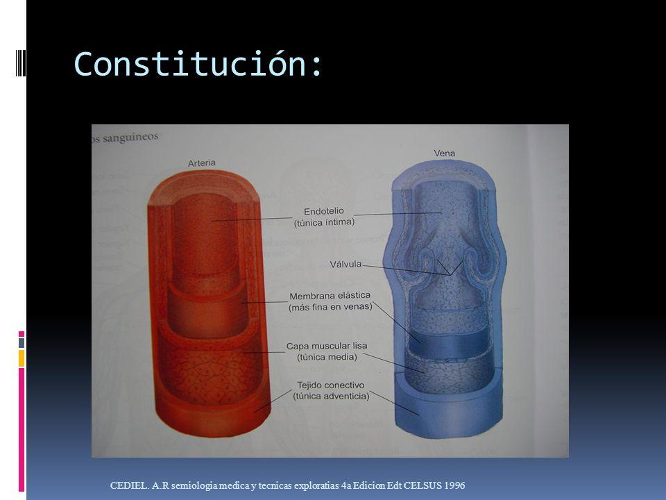 Constitución: CEDIEL. A.R semiologia medica y tecnicas exploratias 4a Edicion Edt CELSUS 1996