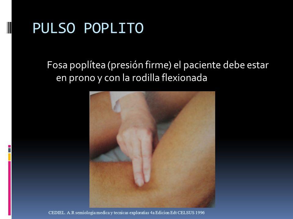 PULSO POPLITOFosa poplítea (presión firme) el paciente debe estar en prono y con la rodilla flexionada.