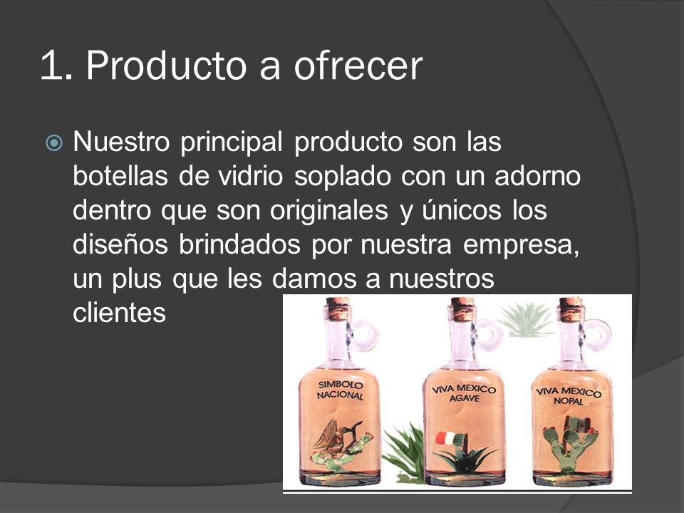 1. Producto a ofrecer