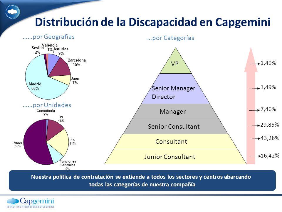 Distribución de la Discapacidad en Capgemini
