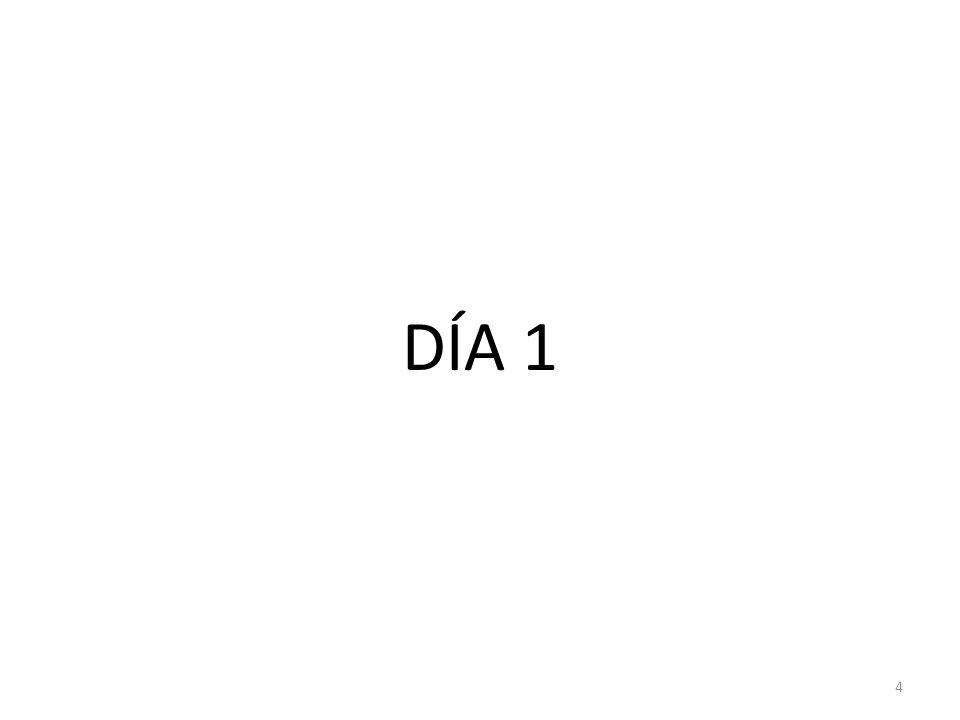 DÍA 1