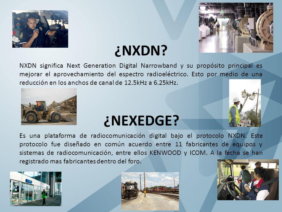 ¿NXDN