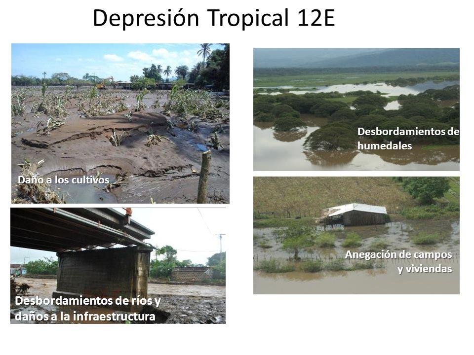 Depresión Tropical 12E Desbordamientos de ríos y