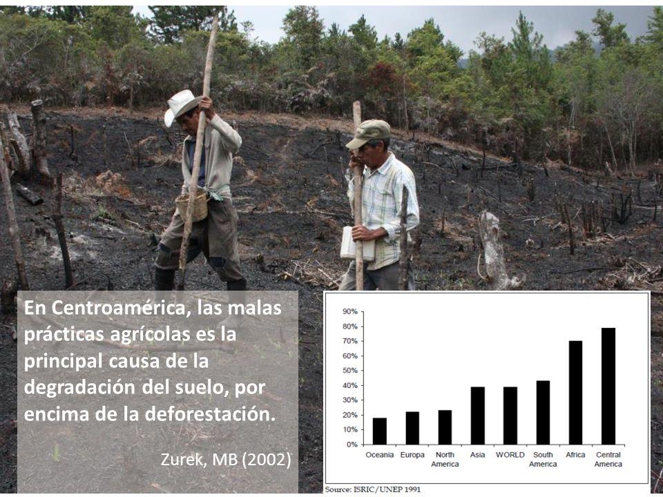 En Centroamérica, las malas prácticas agrícolas es la principal causa de la degradación del suelo, por encima de la deforestación.