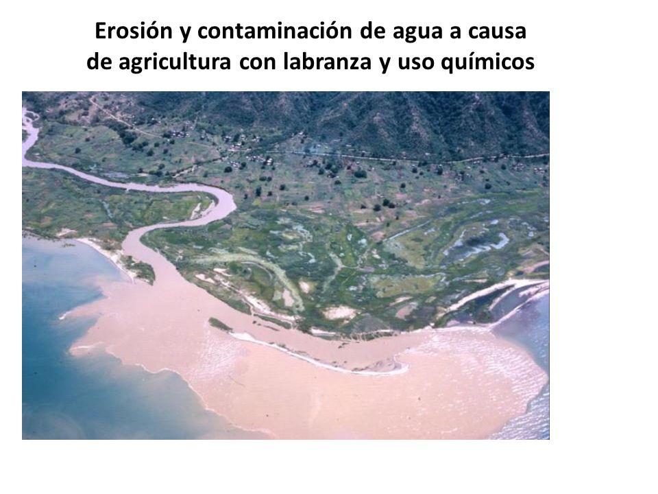 Erosión y contaminación de agua a causa de agricultura con labranza y uso químicos