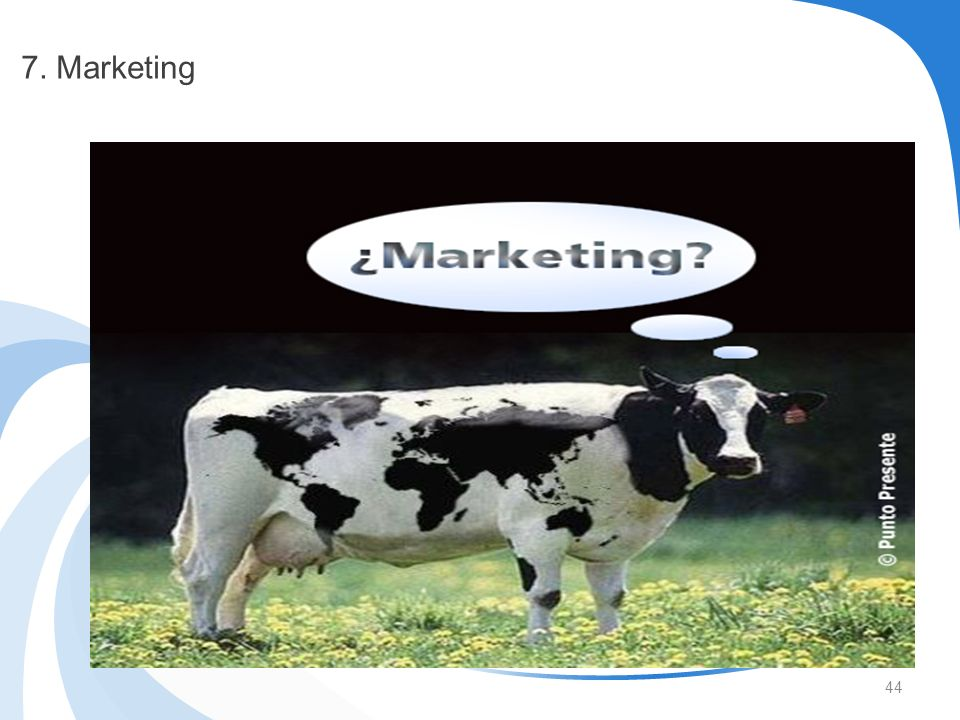 7. Marketing