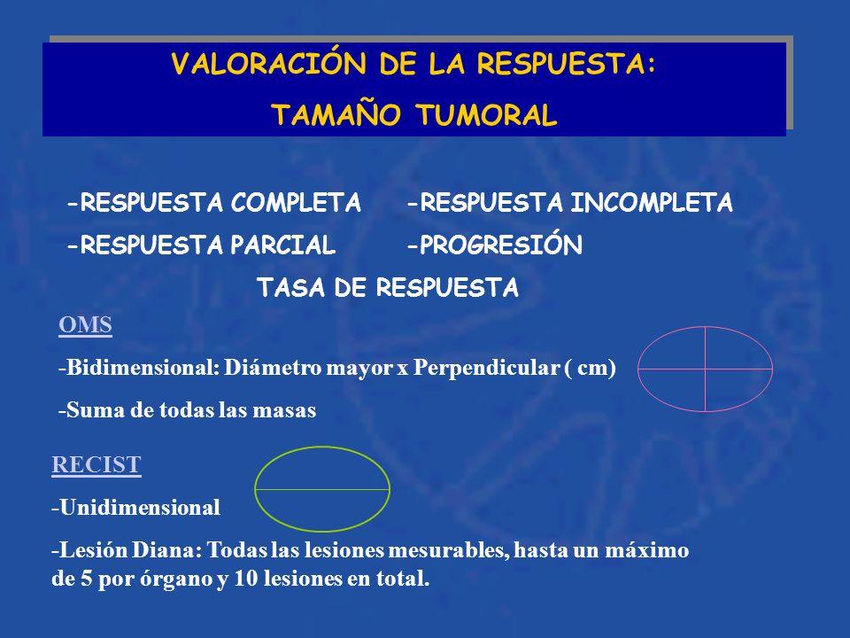VALORACIÓN DE LA RESPUESTA: