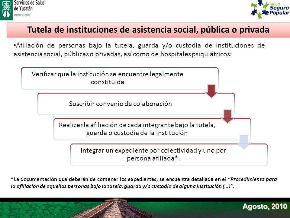 Tutela de instituciones de asistencia social, pública o privada