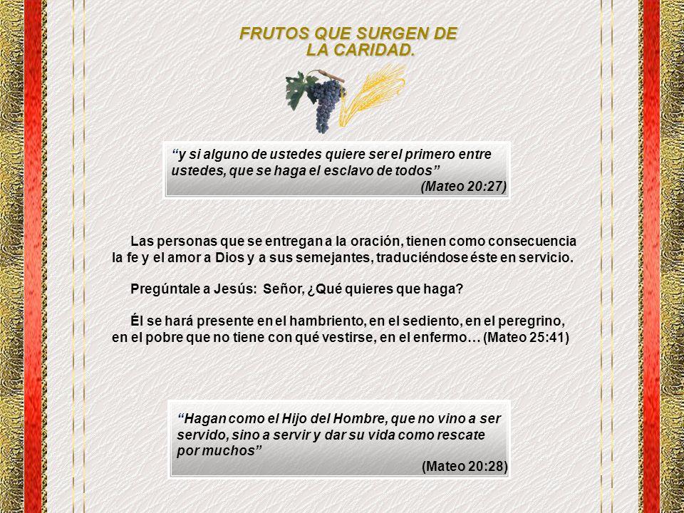 FRUTOS QUE SURGEN DE LA CARIDAD.
