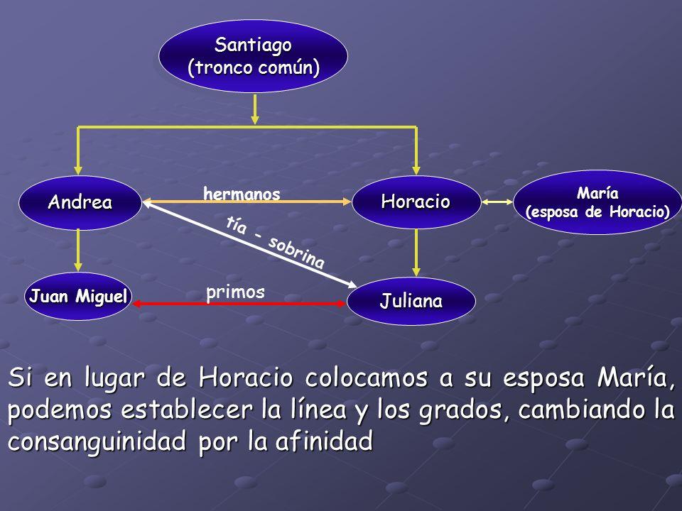 Santiago (tronco común) María. (esposa de Horacio) Andrea. Horacio. hermanos. tía - sobrina. Juan Miguel.